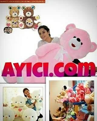 ayici.com