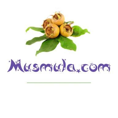 musmula.com