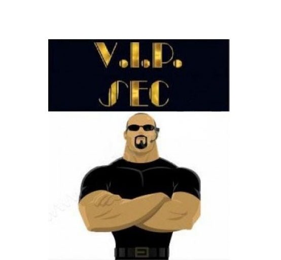 vipsec v.i.p. security